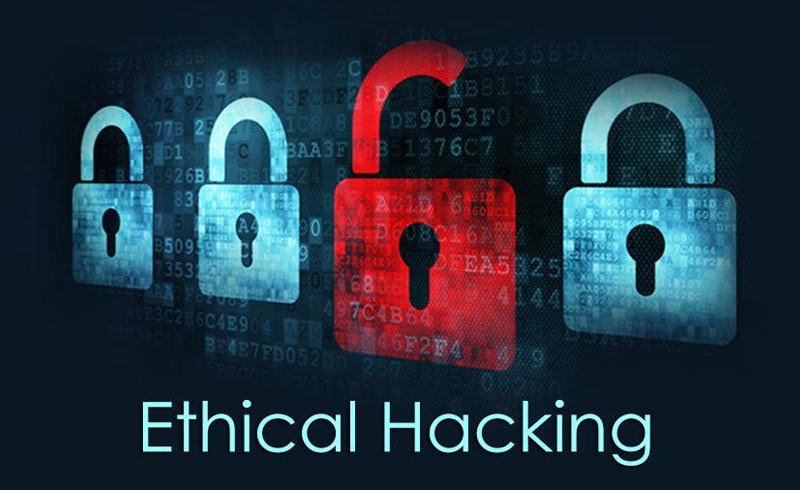 Top 10 Ethical Hacking Experts