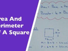 Perimeter and Area of Square